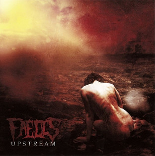 Faeces - Upstream (2011)